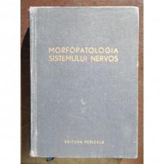 MORFOLOGIA SISTEMULUI NERVOS - ION T. NICULESCU