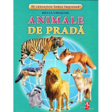 Animale de prada - Cartonase, Silvia Ursache