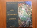 Valori ale patrimoniului hunedorean muzeul civilizatiei dacice romane deva 2006