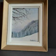 Tablou pictura in ulei; Autor; Maria Chilian; Dimensiuni: 30x20