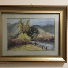 Peisaj rural - tablou semnat, 1993 (31x25,5 cm.) - Superb!