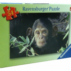 Minipuzzle Animale, 54 Piese