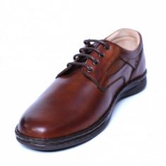 Pantofi barbati din piele naturala, Bruce, Cobra, Maro, 39 EU