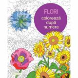 Flori. Coloreaza dupa Numere (Carte de colorat pentru adulti) - Else Lennox