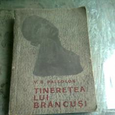 Tineretea lui Brancusi - V. G. Paleolog
