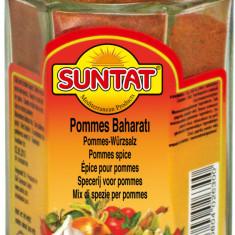 Condiment pentru cartofi prajiti 140g Suntat