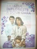 Afis Film -Liliacul infloreste a doua oara-1988 regizor C Nichituș, cu E Popescu