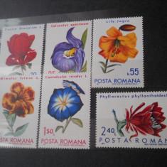 1971  lp 767  flori din gradni botanice