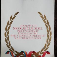 REVISTA ARTA PLASTICA NR.1/1988 - TOVARASULUI NICOLAE CEAUSESCU PROFUND OMAGIU .INALTA CINSTIRE SI RECUNOSTINTA PARTIDULUI SI A INTREGULUI POPOR