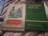 PE DRUMURI DE MUNTE DE CALISTRAT HOGAS,2 VOLUME