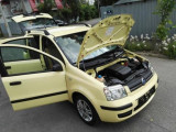 Fiat Panda, Austria, Benzina, Hatchback