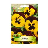 Seminte de flori Florian Viola galben cu maro