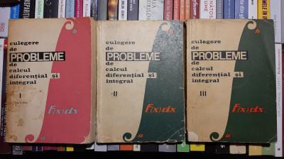 CULEGERE DE PROBLEME DE CALCUL DIFERENTIAL SI INTEGRAL - L. ARAMA, T. MOROZAN foto