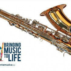 Tenor Saxofon AURIU+ARGINTIU SAX curbat Karl Glaser Sax Saxophone Si b