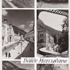 bnk cp Baile Herculane - Vedere - circulata