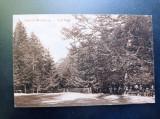 AKVDE20 - Carte postala - Slanic-Moldova - Trei Fagi, Circulata, Printata