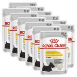 Cumpara ieftin Royal Canin Dermacomfort Dog Loaf pliculeț cu pateu pentru câini cu probleme de piele 12 x 85 g