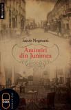 în format pdf | Iacob Negruzzi, Amintiri din Junimea | ebook