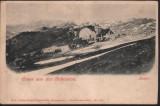 Bucovina Campulung Rarau- vededere generala