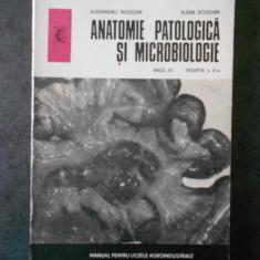 ALEXANDRU BOGDAN - ANATOMIE PATOLOGICA SI MICROBIOLOGIE. ANUL III, TREAPTA II