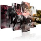 Tablou canvas 5 piese - Cal negru pe fondul cerului crimson - 200x100 cm, Artgeist