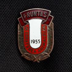 Insigna Fruntas in cresterea animalelor - 1955 - Rara - Agricultura
