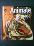 JOHN SEIDENSTCKER - ANIMALE DE PRADA (Enciclopedia INSIDERS)
