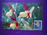 HOPCT MAXIMA 73169  PAPUCUL DOAMNEI   -FLORI ROMANIA, Europa