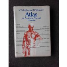 ATLAS DE ANATOMIA NORMAL HUMANA - V.YA.LIPHENKO (EDITIE IN LIMBA SPANIOLA)