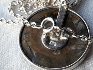 MEDALION argint MELC FOSILIZAT splendid ELEGANT stare IMPECABILA pe Lant ARGINT