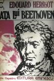 Viata lui Beethoven (Clepsidra)