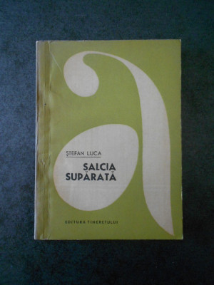 STEFAN LUCA - SALCIA SUPARATA foto