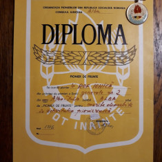 DIPLOMA SI INSIGNA PIONIER DE FRUNTE - ANUL 1976 - RARITATE