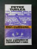 PETRE TURLEA - DIN CULISELE ... PARLAMENTULUI vol. 1 (1990-1992)