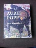 AUREL POPP, INTRE DOUA CULTURI - DUMITRU PACURARU