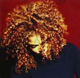 Janet Jackson The Velvet Rope (cd)