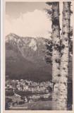 CARTE POSTALA VALEA PRAHOVEI, Necirculata, Printata