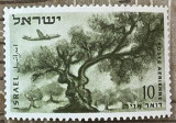 Israel Un măslin în Munții Iudeii, Flora, Nestampilat