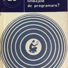 Ce sint limbajele de programare Cristian Calude