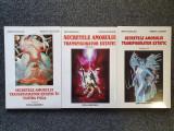 SECRETELE AMORULUI TRANSFIGURATOR EXTATIC IN TANTRA YOGA Douglas Slinger (3 vol)