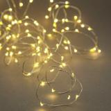 Ghirlanda luminoasa decorativa cu 10 LED-uri Micro Argintiu, L120 cm