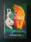 ERIN HUNTER - PISICILE RAZBOINICE. FURTUNA volumul 4