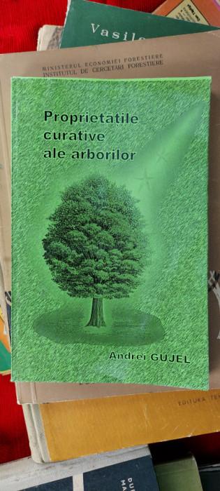 Proprietatile curative ale arborilor- Andrei Gujel