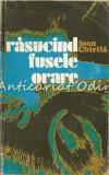 Rasucind Fusele Orare - Ioan Chirila