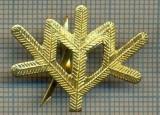 Y 1800 INSIGNA - MILITARA -SEMN DE ARMA -VANATORI DE MUNTE  -PENTRU COLECTIONARI