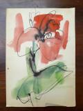 35. Floare, acuarela veche, pictura