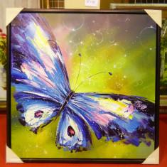 Tablou pictat manual pe panza in ulei Fluture A-258, Natura, Realism