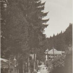 Baile Tusnad aprox. 1940 - Vedere