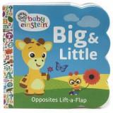 Baby Einstein: Big & Little