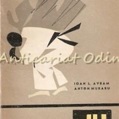 Judo - Ioan L. Avram, Anton Muraru